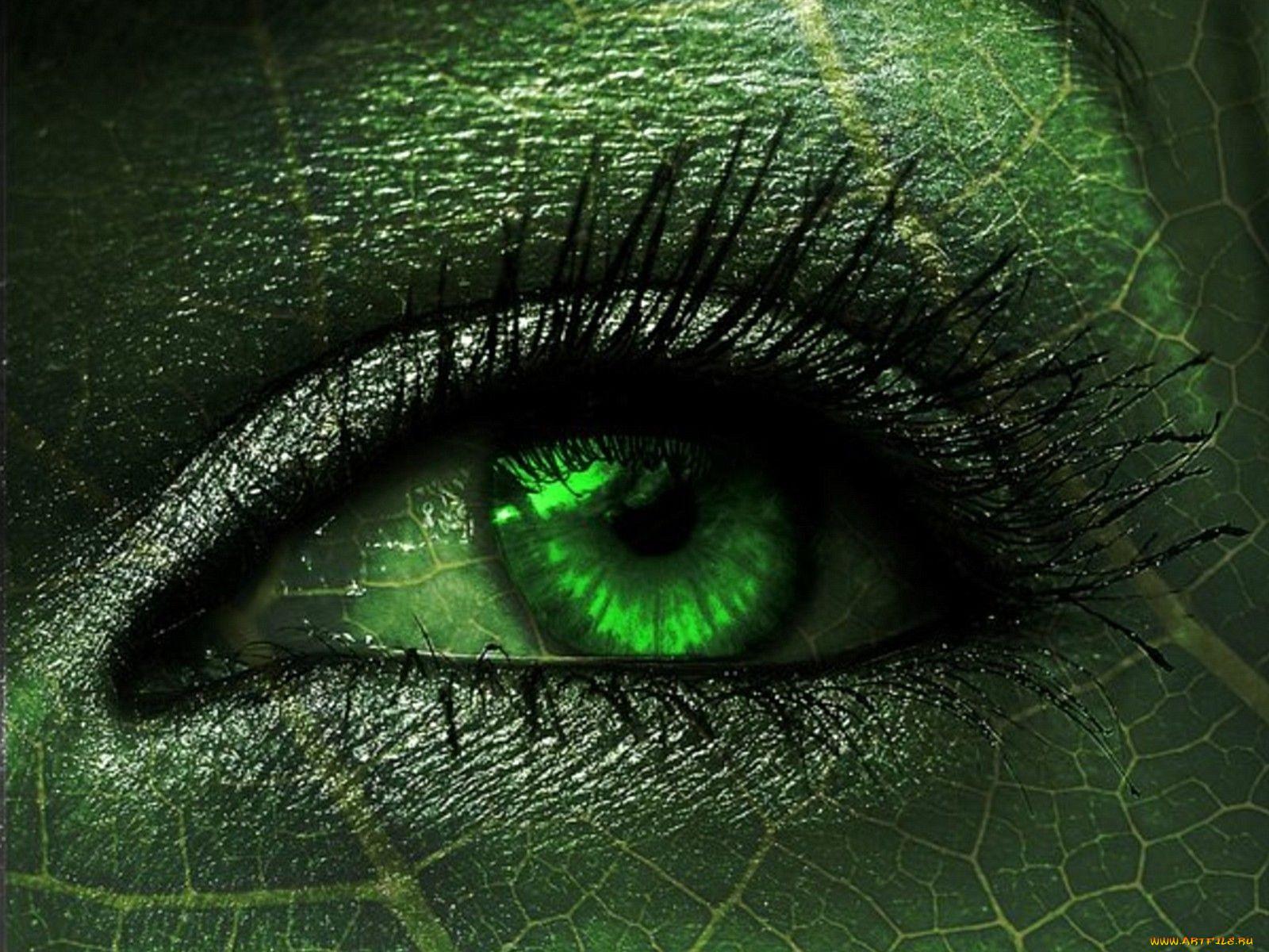 красивая картинка серо-зеленая противном